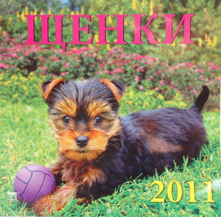 Иллюстрация 1 из 2 для Календарь. 2011 год. Щенки (71006)   Лабиринт - сувениры. Источник: Лабиринт