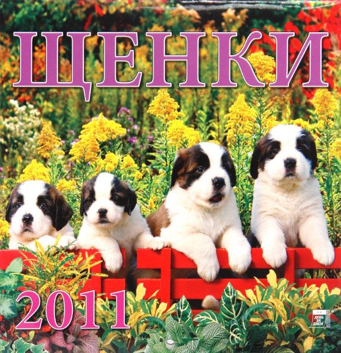 Иллюстрация 1 из 2 для Календарь. 2011 год. Щенки (30104) | Лабиринт - сувениры. Источник: Лабиринт