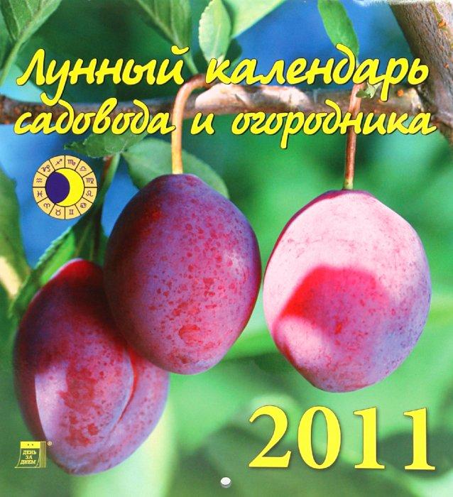 Иллюстрация 1 из 2 для Календарь. 2011 год. Лунный календарь (45102) | Лабиринт - сувениры. Источник: Лабиринт