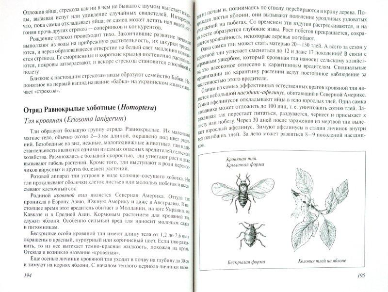 Иллюстрация 1 из 8 для Многообразие живой природы. Животные - Владислав Сивоглазов | Лабиринт - книги. Источник: Лабиринт
