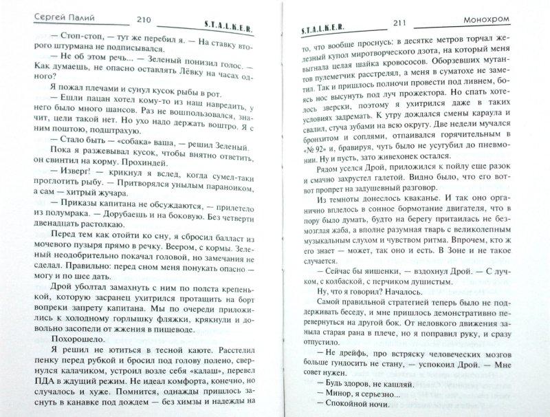 Иллюстрация 1 из 16 для Монохром - Сергей Палий | Лабиринт - книги. Источник: Лабиринт