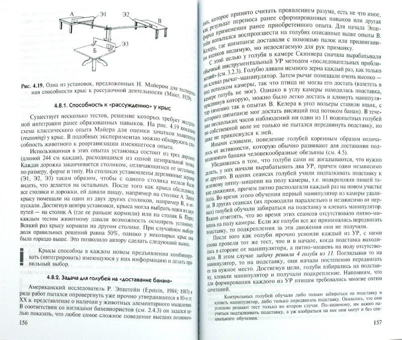 Иллюстрация 1 из 9 для Зоопсихология. Элементарное мышление животных - Зорина, Полетаева | Лабиринт - книги. Источник: Лабиринт