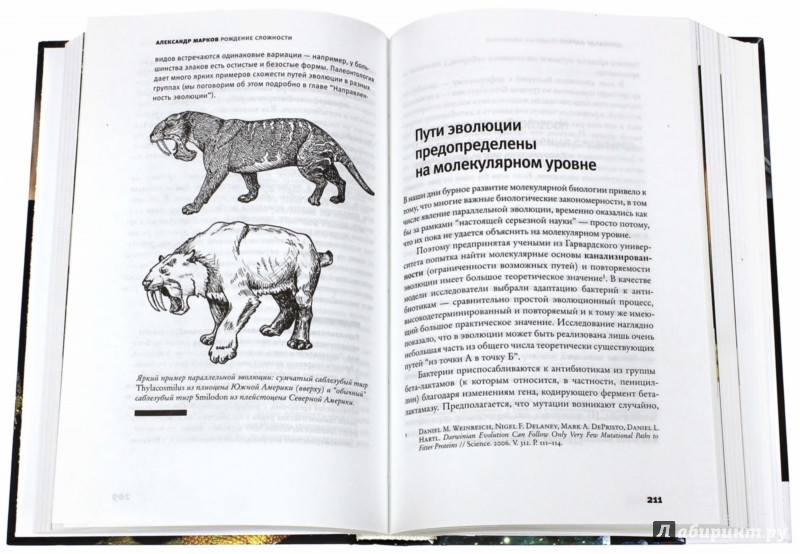 Иллюстрация 1 из 41 для Рождение сложности. Эволюционная биология сегодня. Неожиданные открытия и новые вопросы - Александр Марков | Лабиринт - книги. Источник: Лабиринт