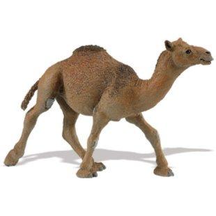 Иллюстрация 1 из 3 для Одногорбый верблюд (222429) | Лабиринт - игрушки. Источник: Лабиринт