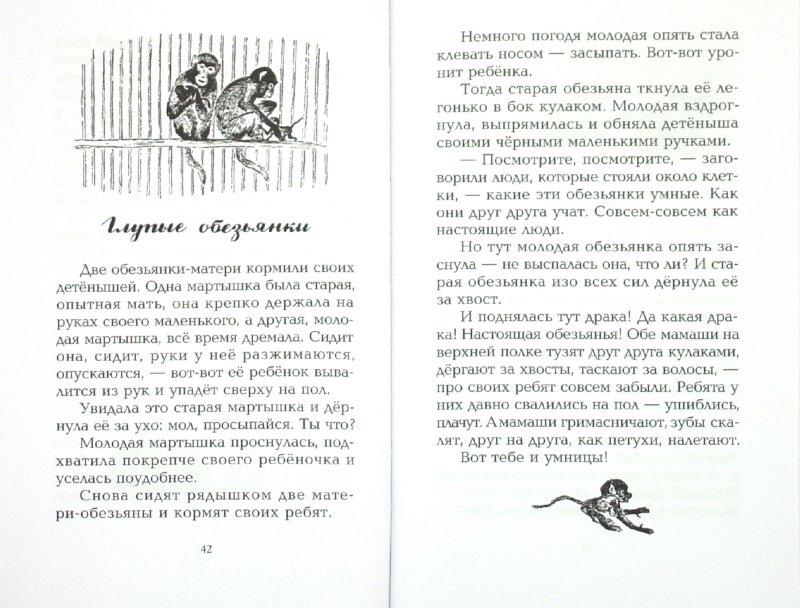 Иллюстрация 1 из 14 для Про больших и маленьких - Евгений Чарушин   Лабиринт - книги. Источник: Лабиринт