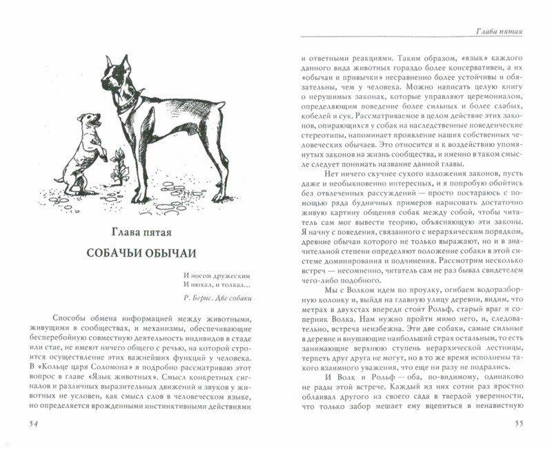 Иллюстрация 1 из 13 для Человек находит друга - Конрад Лоренц | Лабиринт - книги. Источник: Лабиринт