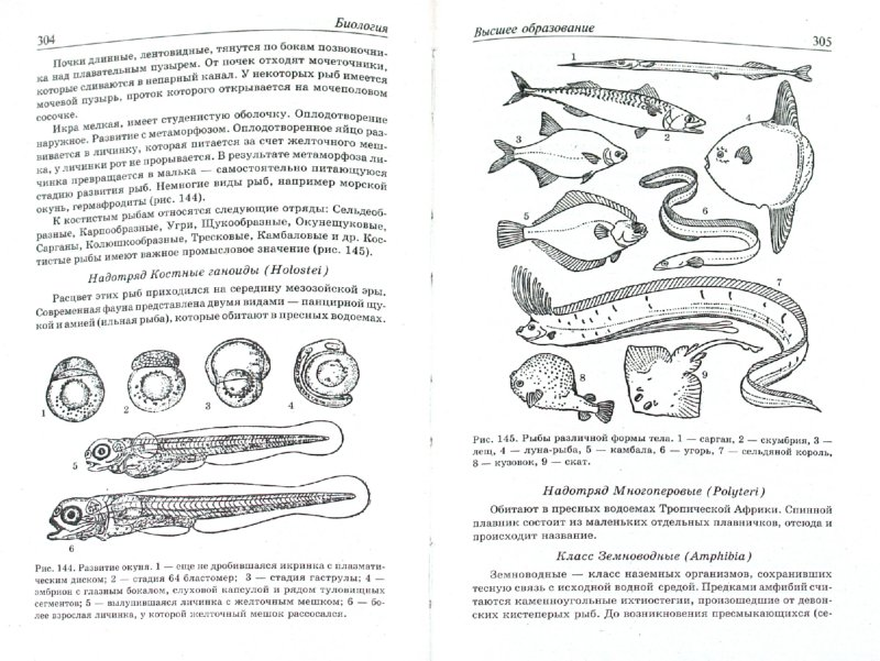 Иллюстрация 1 из 2 для Биология - Каменский, Ким, Великанов | Лабиринт - книги. Источник: Лабиринт