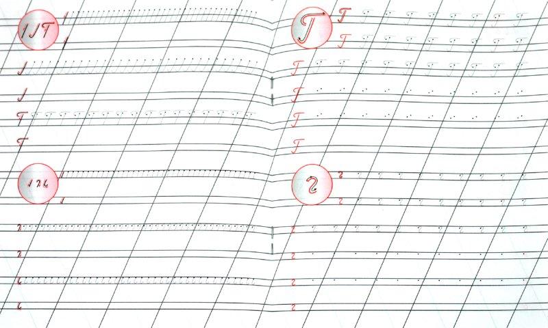 Иллюстрация 1 из 4 для Правильно пишем буквы Б, Д, Я, Г, Ь, Ч, Ш, Ж | Лабиринт - книги. Источник: Лабиринт
