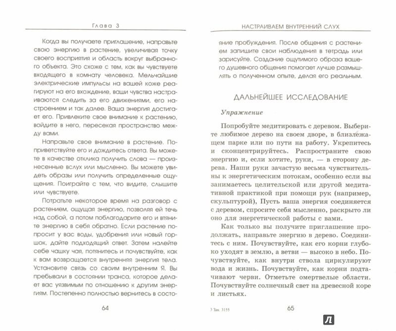 Иллюстрация 1 из 10 для Голоса Земли. Путь зеленой духовности - Клеа Данаан | Лабиринт - книги. Источник: Лабиринт