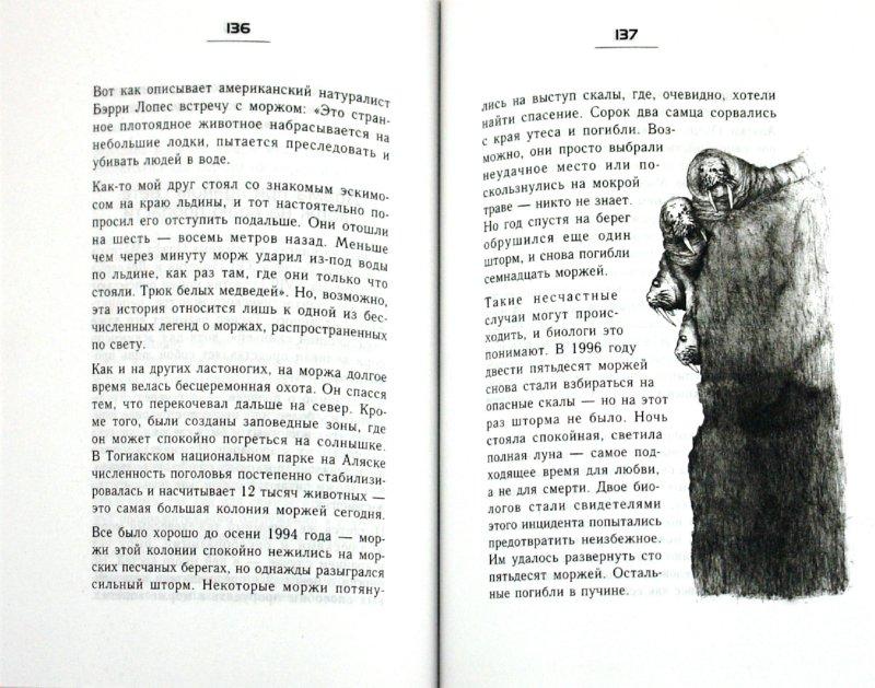 Иллюстрация 1 из 19 для Странности эволюции - 2. Ошибки и неудачи в природе - Йорг Циттлау   Лабиринт - книги. Источник: Лабиринт