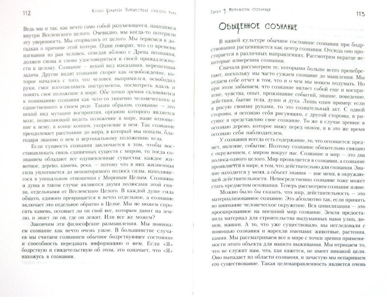 Иллюстрация 1 из 10 для Путешествие сквозь тьму. От депрессии к обретению шаманской силы - Карло Цумштейн   Лабиринт - книги. Источник: Лабиринт