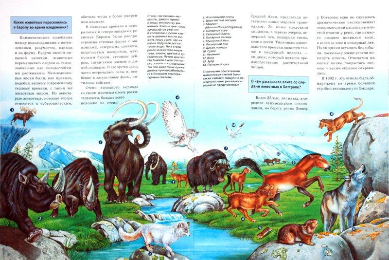 Иллюстрация 1 из 8 для Ледниковый период - Райнер Крумменерль | Лабиринт - книги. Источник: Лабиринт