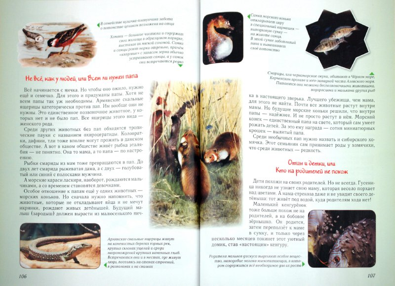 Иллюстрация 1 из 62 для Занимательная биология - Ольга Колпакова   Лабиринт - книги. Источник: Лабиринт