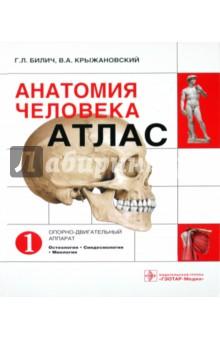 Анатомия человека: атлас. В 3-х томах. Том 1. Опорно-двигательный аппарат. Остеология, Синдесмология анатомия человека русско латинский атлас