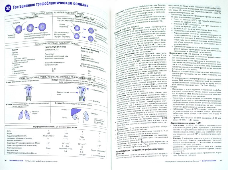 Иллюстрация 1 из 16 для Наглядное акушерство и гинекология - Норвиц, Шордж   Лабиринт - книги. Источник: Лабиринт