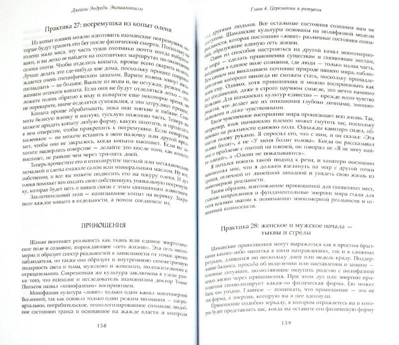 Иллюстрация 1 из 5 для Экошаманизм. Священные практики единства, силы и исцеления Земли - Джеймс Эндреди | Лабиринт - книги. Источник: Лабиринт