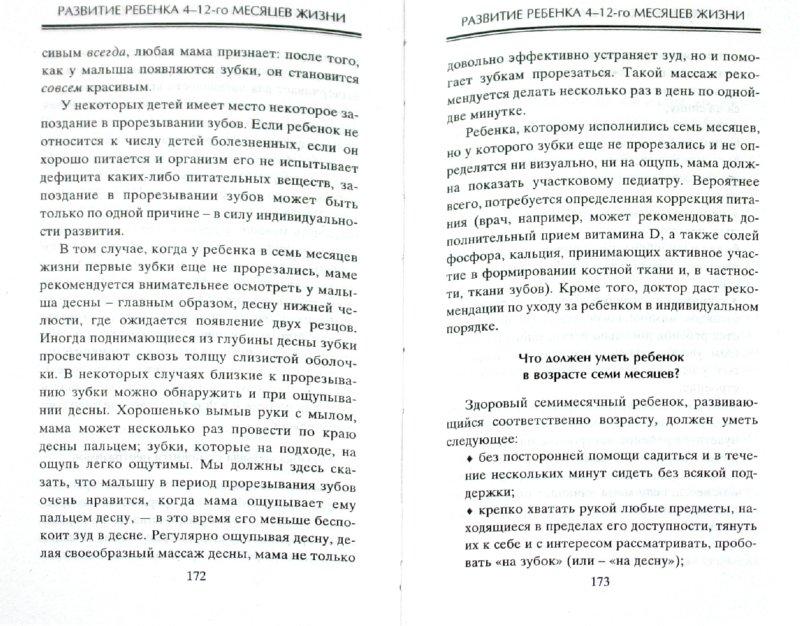 Иллюстрация 1 из 6 для Физическое и психическое развитие ребенка от рождения до школы - Сергей Зайцев | Лабиринт - книги. Источник: Лабиринт