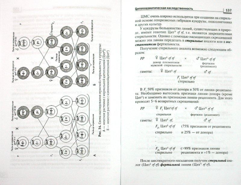 Иллюстрация 1 из 14 для Генетика. Учебник для сельскохозяйстенных ВУЗов - Ефремова, Аистова | Лабиринт - книги. Источник: Лабиринт