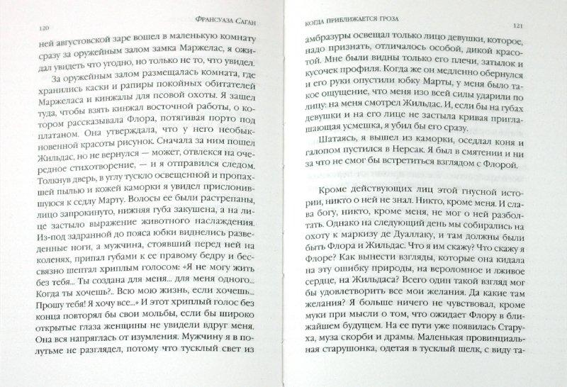Иллюстрация 1 из 5 для Когда приближается гроза - Франсуаза Саган | Лабиринт - книги. Источник: Лабиринт