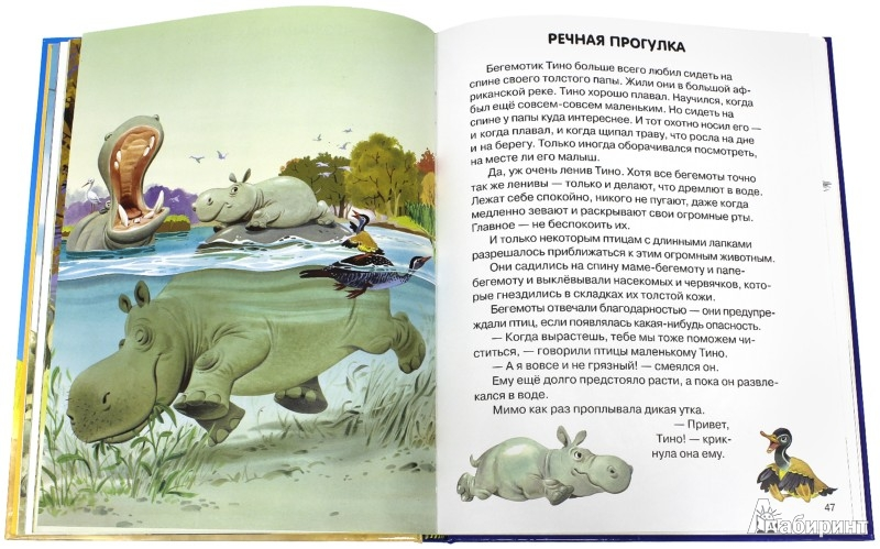 Иллюстрация 1 из 40 для Веселые истории о животных - Пьеранджела Фьорани | Лабиринт - книги. Источник: Лабиринт