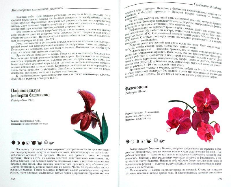 Иллюстрация 1 из 18 для Легкий уход за комнатными растениями. Новейшая энциклопедия - Чуб, Лезина   Лабиринт - книги. Источник: Лабиринт