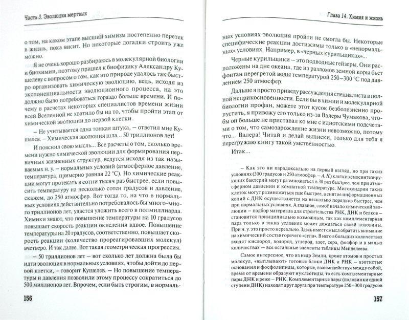 Иллюстрация 1 из 12 для Венец творения в интерьере мироздания - Александр Никонов | Лабиринт - книги. Источник: Лабиринт