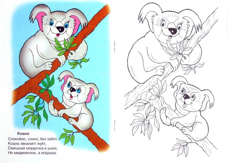 Иллюстрация 1 из 10 для В жарких странах - Скребцова, Лопатина | Лабиринт - книги. Источник: Лабиринт