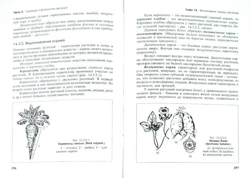 Иллюстрация 1 из 18 для Биология (растения, грибы, бактерии, вирусы) - Овчарова, Елина | Лабиринт - книги. Источник: Лабиринт