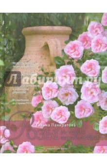 Розы. История одной любви