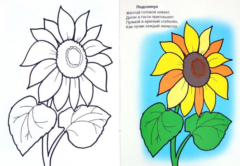 Иллюстрация 1 из 22 для Во саду ли, в огороде - Скребцова, Лопатина | Лабиринт - книги. Источник: Лабиринт