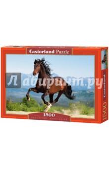 """Puzzle-1500 """"Лошадь"""" (С-150755) от Лабиринт"""