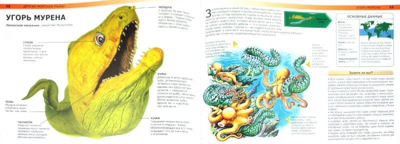 Иллюстрация 1 из 36 для Акулы и другие монстры подводного мира: самые ужасные создания Мирового океана - Сюзан Барраклаух   Лабиринт - книги. Источник: Лабиринт