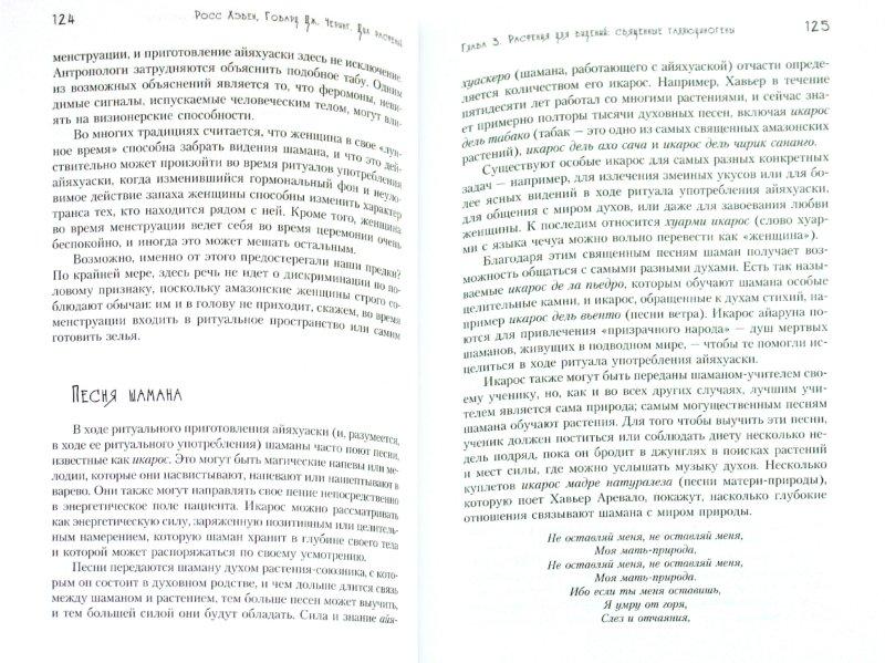 Иллюстрация 1 из 10 для Дух растений. Шаманские практики. Техники исцеления души - Хэвен, Черинг | Лабиринт - книги. Источник: Лабиринт