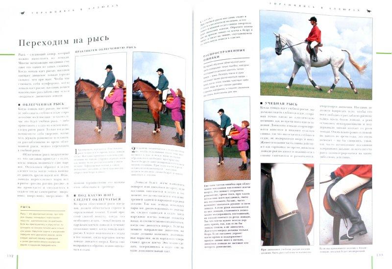 Иллюстрация 1 из 5 для Верховая езда: иллюстрированное практическое руководство - Мьюир, Слай | Лабиринт - книги. Источник: Лабиринт