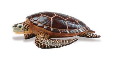 Иллюстрация 1 из 9 для Морская черепаха (260429) | Лабиринт - игрушки. Источник: Лабиринт