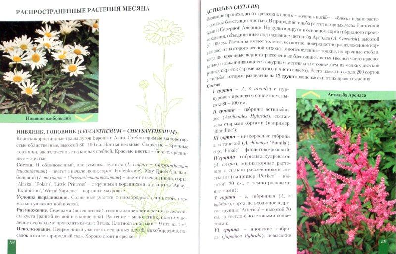 Иллюстрация 1 из 15 для Год цветовода от профессора Р.А. Карписоновой - Римма Карписонова | Лабиринт - книги. Источник: Лабиринт