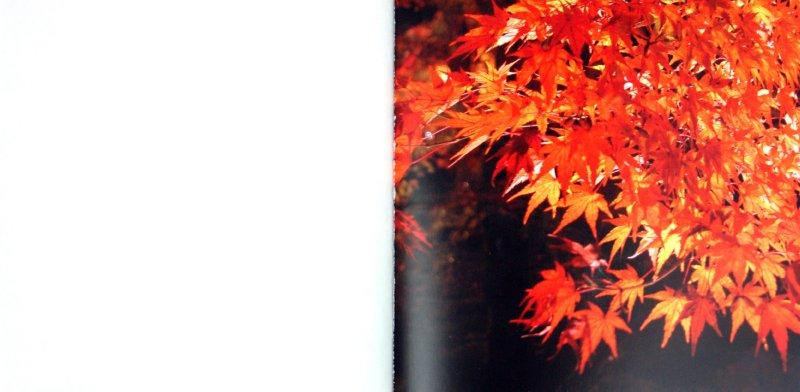Иллюстрация 1 из 30 для Япония. Снег. Луна. Цветы...: сборник | Лабиринт - книги. Источник: Лабиринт