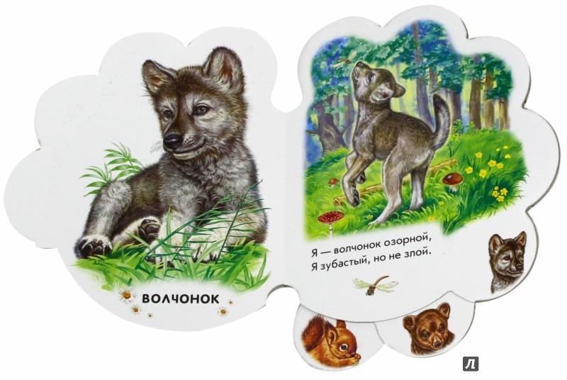 Иллюстрация 1 из 25 для В лесу - Ирина Солнышко | Лабиринт - книги. Источник: Лабиринт