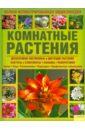 Плезант Барбара Комнатные растения. Полная иллюстрированная энциклопедия
