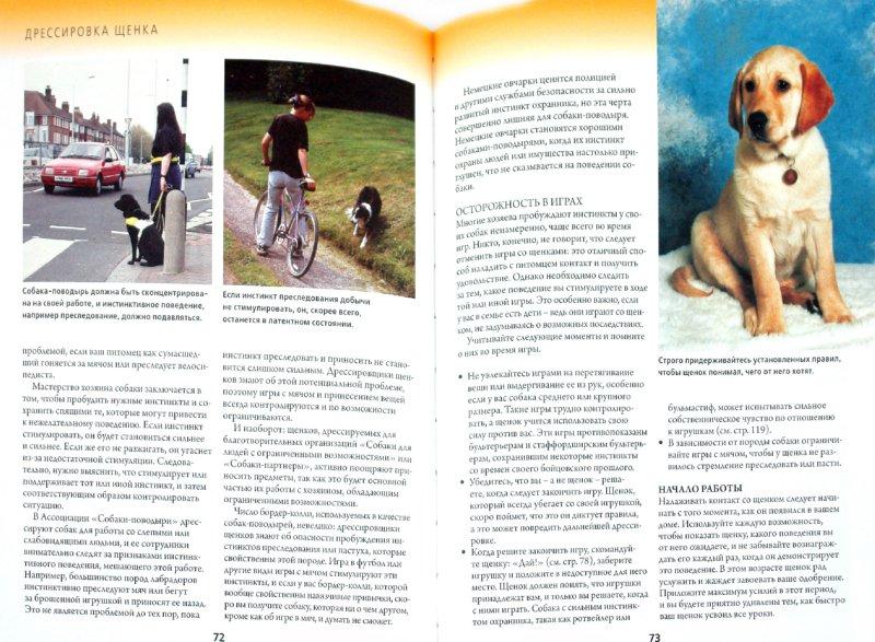 Иллюстрация 1 из 16 для Дрессировка и воспитание щенка. Как воспитать идеальную собаку, используя уникальную методику - Джулия Барнс | Лабиринт - книги. Источник: Лабиринт