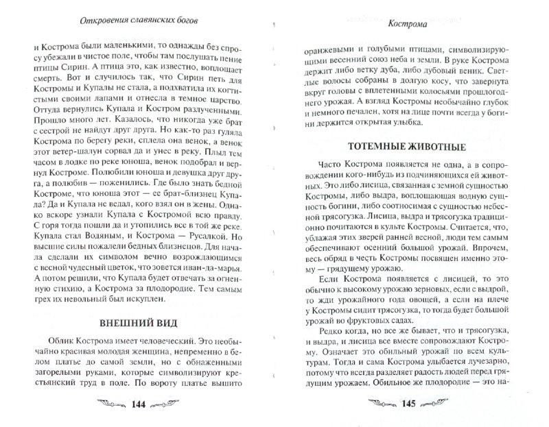 Иллюстрация 1 из 16 для Откровения славянских богов - Тимур Прозоров | Лабиринт - книги. Источник: Лабиринт