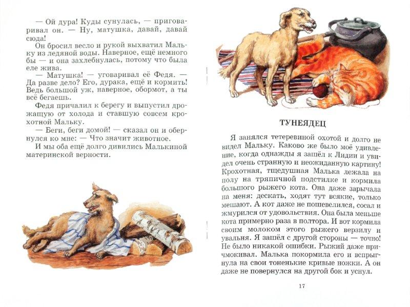 Иллюстрация 1 из 40 для Про Мальку - Василий Белов | Лабиринт - книги. Источник: Лабиринт
