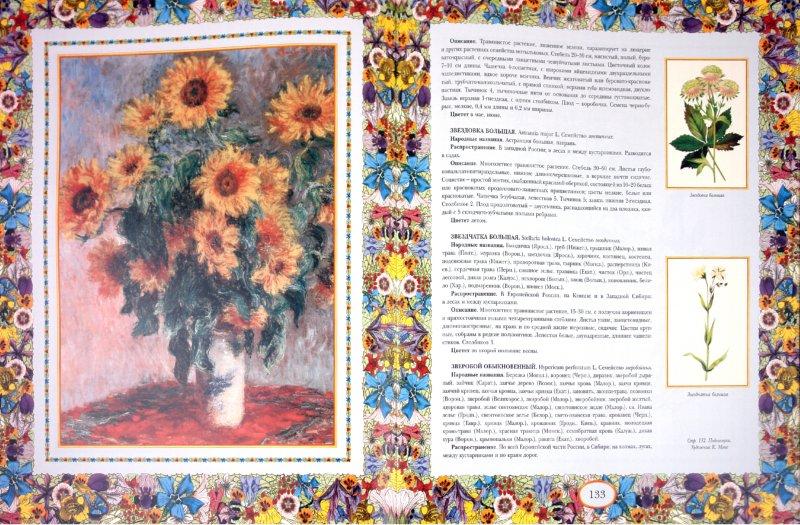 Иллюстрация 1 из 11 для Русский травник | Лабиринт - книги. Источник: Лабиринт