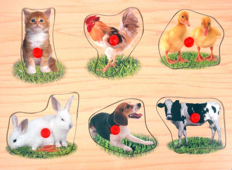 Иллюстрация 1 из 3 для Пазлы (Ф21-1474) | Лабиринт - игрушки. Источник: Лабиринт