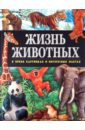 Жизнь животных в ярких картинках и интересных фактах, Поуп Джойс
