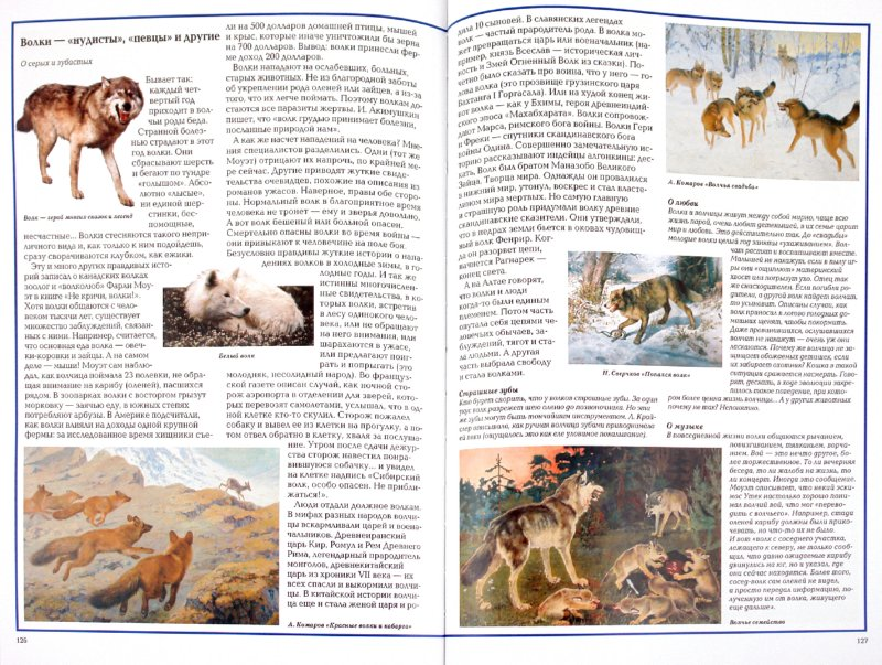 Иллюстрация 1 из 25 для Загадки животного мира - Калашников, Лаврова   Лабиринт - книги. Источник: Лабиринт