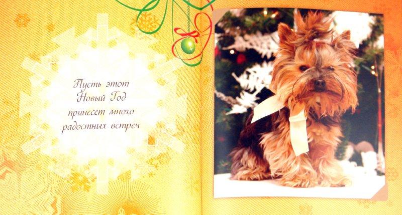 Иллюстрация 1 из 11 для С Новым годом! - Марина Филькина | Лабиринт - книги. Источник: Лабиринт