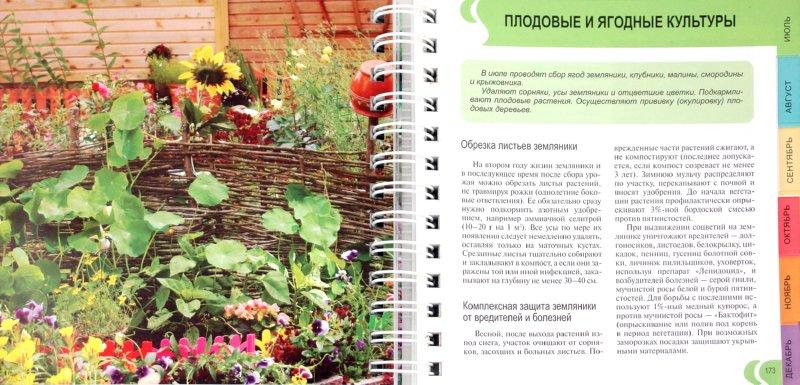 Иллюстрация 1 из 5 для Ваш сад день за днем - Князева, Князева | Лабиринт - книги. Источник: Лабиринт