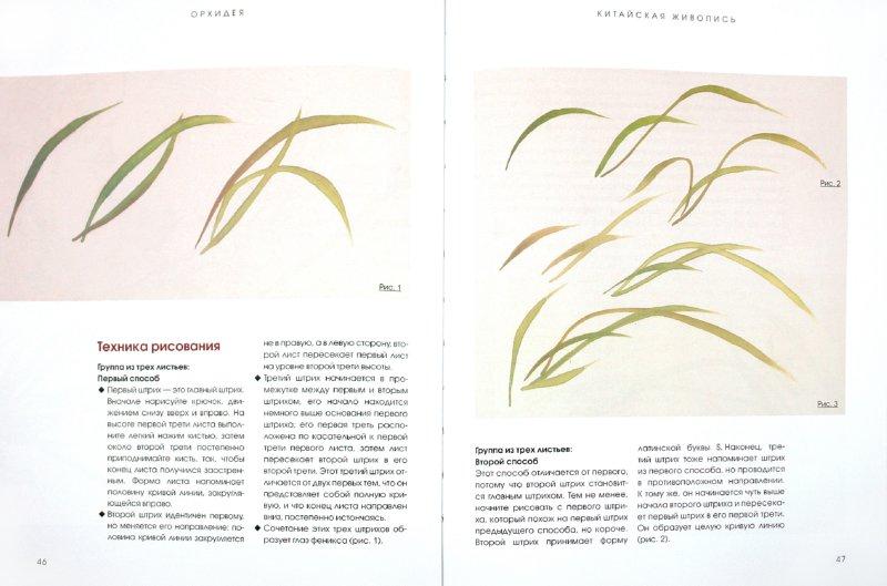 Иллюстрация 1 из 13 для Китайская живопись: Техника рисования, инструменты - Ли, Ли | Лабиринт - книги. Источник: Лабиринт