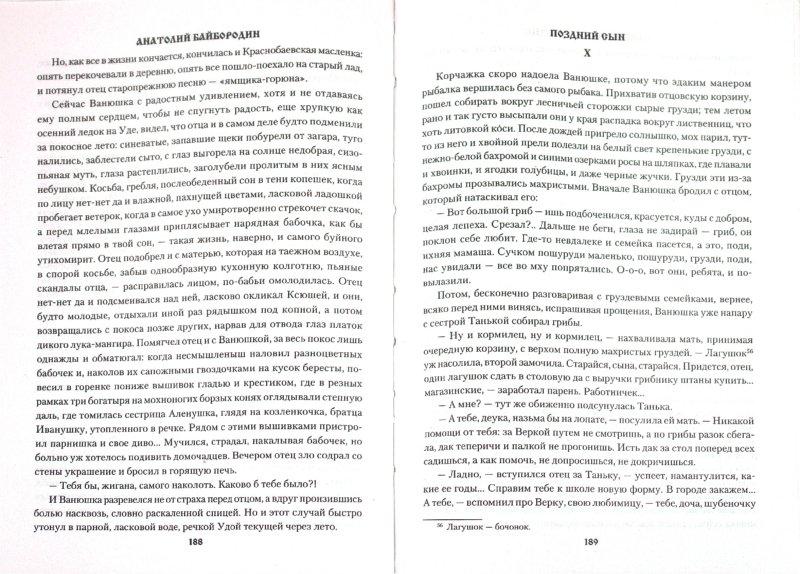 Иллюстрация 1 из 8 для Не родит сокола сова - Анатолий Байбородин | Лабиринт - книги. Источник: Лабиринт